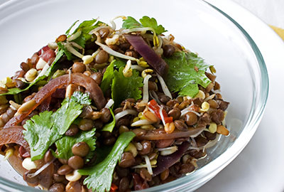 Earlee Products Product Innovations Beans and Salad